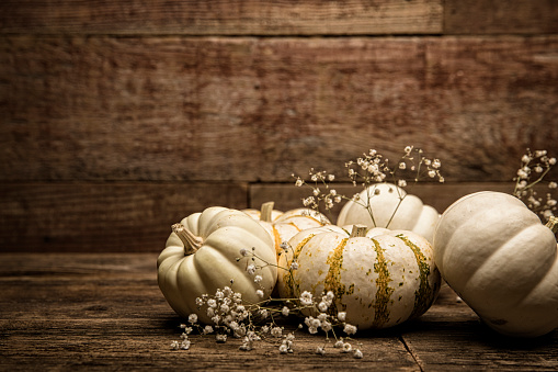Corner「Autumn White Small pumpkins on wood background with Baby breath flowers」:スマホ壁紙(18)