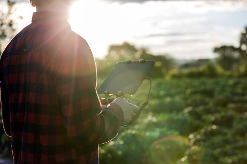 農業「夕暮れ時の無人リモート コント ローラーを使用して男農家パイロット」:スマホ壁紙(7)