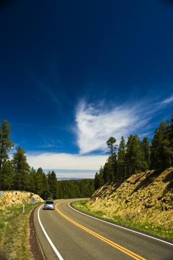 カイバブ国有林「State Route 67, Kaibab Plateau, Arizona」:スマホ壁紙(13)