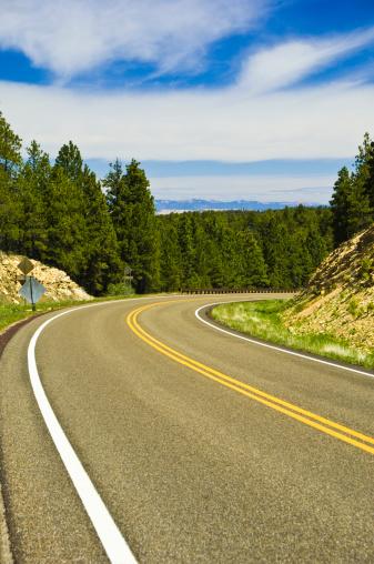 Kaibab National Forest「State Route 67, Kaibab Plateau, Arizona」:スマホ壁紙(12)
