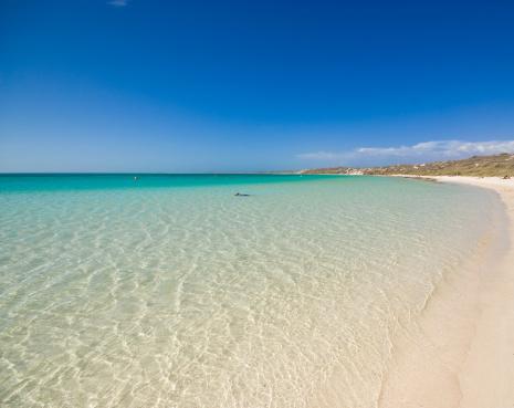 Western Australia「Beach at Coral Bay Western Australia」:スマホ壁紙(16)
