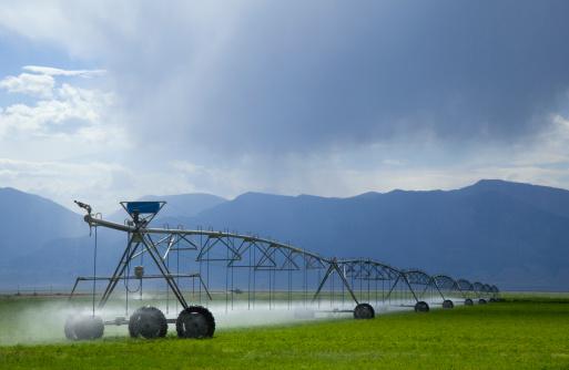 Sprinkler「Rolling irrigation mechanism sprays alfalfa field」:スマホ壁紙(7)