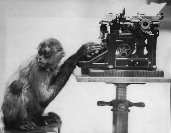Monkey「Monkey With A Typewriter」:写真・画像(18)[壁紙.com]