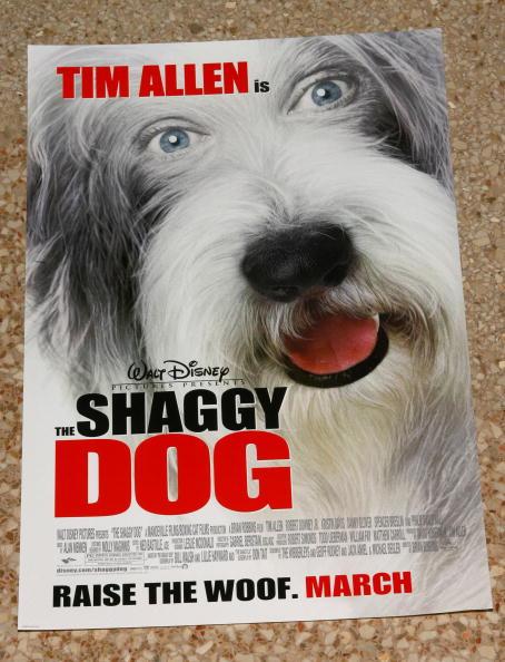ワールド・オブ・ディズニーストア「Walt Disney Pictures Presents The Stars Of 'The Shaggy Dog'」:写真・画像(1)[壁紙.com]
