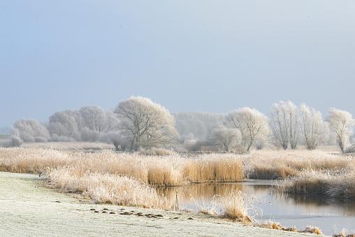 Frost「Frozen winter river IJssel landscape with a beautiful sky」:スマホ壁紙(12)