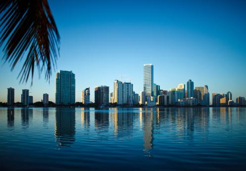 Miami Beach「マイアミの街並みとブリッケル」:スマホ壁紙(3)