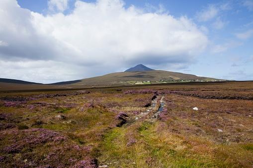 アキル島「Irish Bog; Achill Island, County Mayo, Ireland」:スマホ壁紙(5)