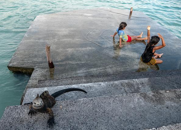 世界遺産「Nature and Human Lives Seek Equilibrium In Galapagos」:写真・画像(14)[壁紙.com]