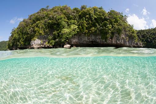 Shallow「Bright sunlight dances across a shallow sand seafloor in Palaus lagoon.」:スマホ壁紙(18)