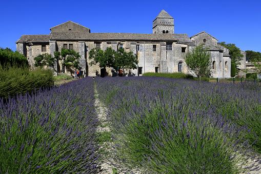 Refugee「Saint Paul de Mausole Monastery in Provence」:スマホ壁紙(9)