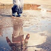 雨に関する画像まとめ!:まとめ