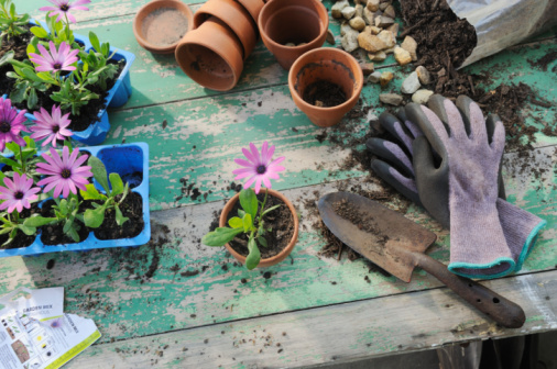Protective Glove「Craft persons workspace (gardening)」:スマホ壁紙(1)