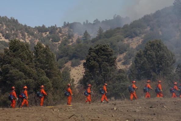San Bernardino National Forest「Southern California Wildfire Burns Over 3500 Acres Of San Gabriel Mtns」:写真・画像(19)[壁紙.com]