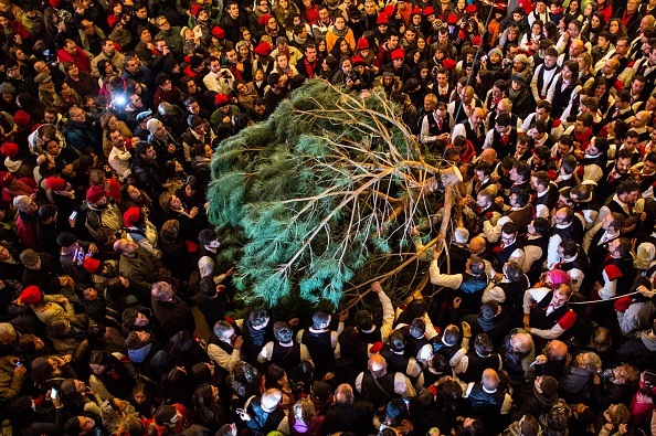 David Ramos「The Pine Festival in Centelles」:写真・画像(7)[壁紙.com]