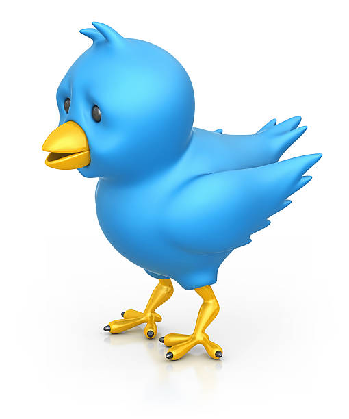 blue bird:スマホ壁紙(壁紙.com)