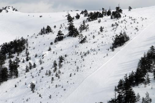 スノーボード「スキーセンター」:スマホ壁紙(10)