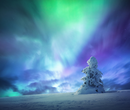 Fantasy「Idyllic Winter Night Under Colorful Sky」:スマホ壁紙(1)