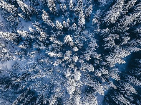 Julian Alps「Idyllic winter landscape from above」:スマホ壁紙(16)