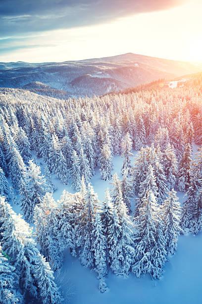 のどかな冬の日の出:スマホ壁紙(壁紙.com)