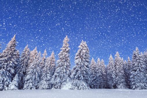 吹雪「のどかな冬の日」:スマホ壁紙(8)