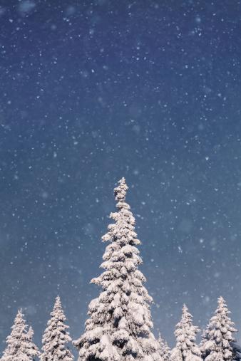 雪が降る「のどかな冬」:スマホ壁紙(11)