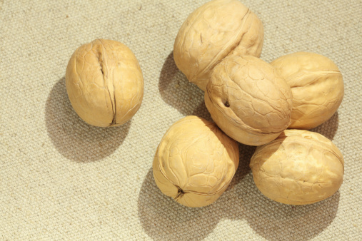 Dietary Fiber「Group of walnuts」:スマホ壁紙(11)