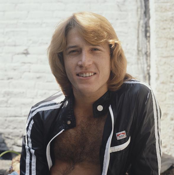 Andy Gibb「Andy Gibb」:写真・画像(9)[壁紙.com]