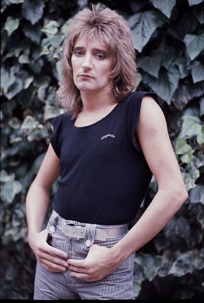 髪型「Rod Stewart」:写真・画像(18)[壁紙.com]