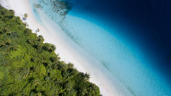 Water's Edge「Arial view of tropical beach」:スマホ壁紙(19)