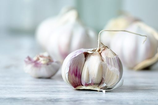 Garlic Clove「Garlic bulb」:スマホ壁紙(2)