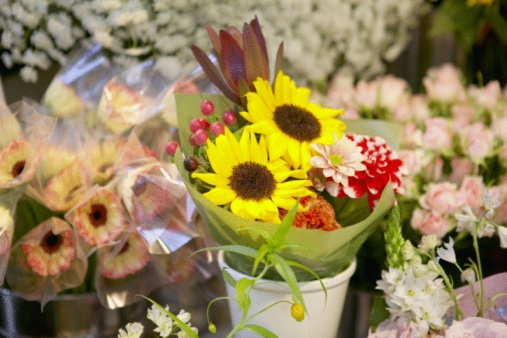 Flower Shop「Flowers at florist」:スマホ壁紙(2)