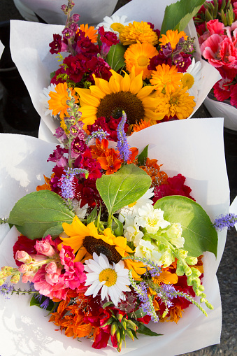 ブーケ「Flowers at Farmers Market, Kirkland, King County, Washington State, USA」:スマホ壁紙(11)