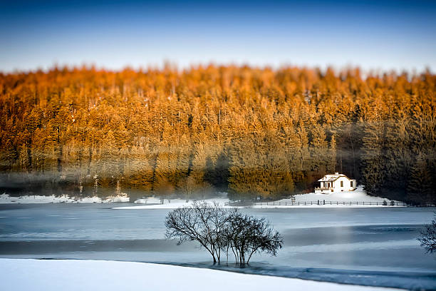 Frozen lake in winter with small remote cabin in forest:スマホ壁紙(壁紙.com)