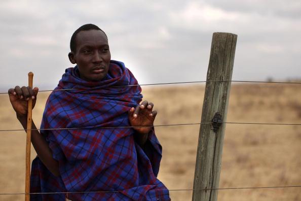Grass Family「Maasai People Struggle As Kenya Declares Drought Emergency」:写真・画像(7)[壁紙.com]
