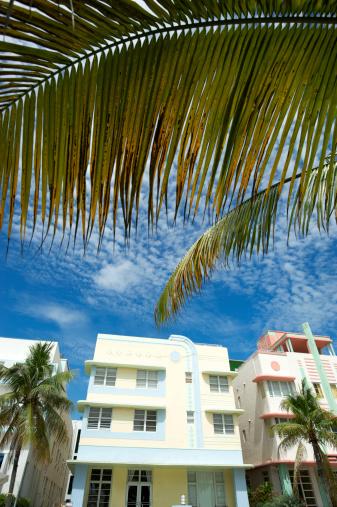 Miami Beach「マイアミビーチのアールデコシーンのヤシの木、ブルースカイ」:スマホ壁紙(16)