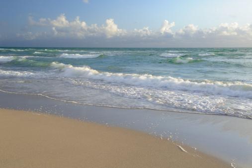 Miami Beach「Miami Beach」:スマホ壁紙(17)