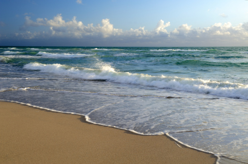 Miami Beach「Miami Beach」:スマホ壁紙(12)