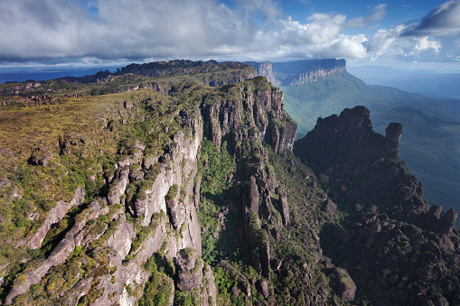Montane Rainforest「Tepuis in Venezuela」:スマホ壁紙(0)