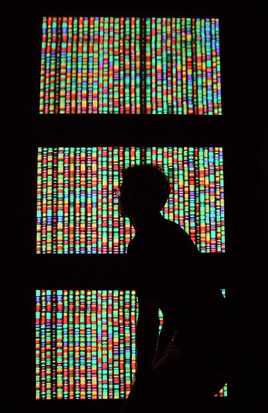 People「Genomic Workshop」:写真・画像(18)[壁紙.com]