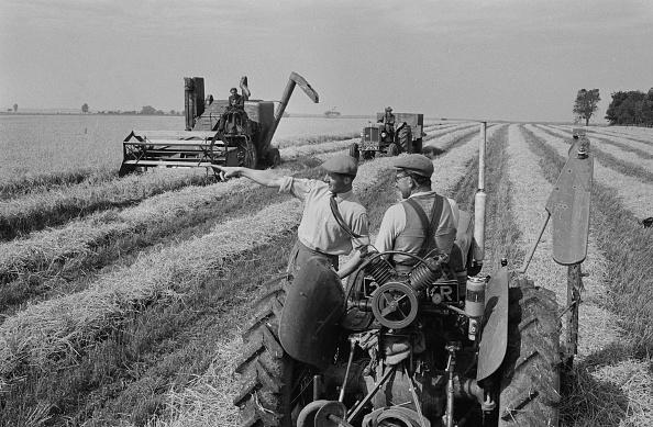 Combine Harvester「Harvesting Barley」:写真・画像(14)[壁紙.com]