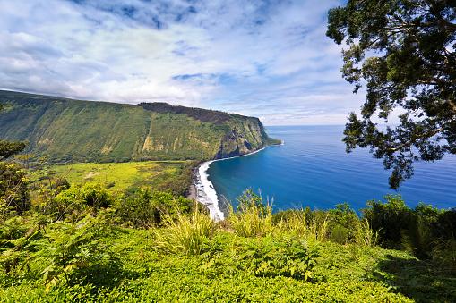 Coastline「Scenic Waipi'o Valley, Big Island, Hawaii」:スマホ壁紙(10)