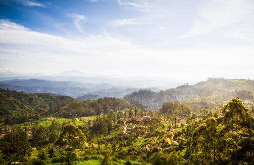 Sri Lanka「Ceylon Highlands near Nuwara Eliya」:スマホ壁紙(8)
