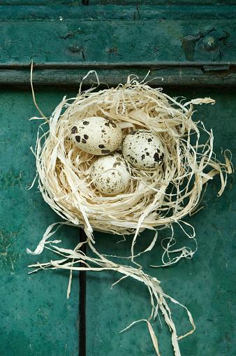 イースター「Easter nest with three quail eggs」:スマホ壁紙(5)