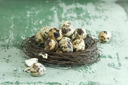 ウズラの卵「Easter nest of quail eggs」:スマホ壁紙(10)
