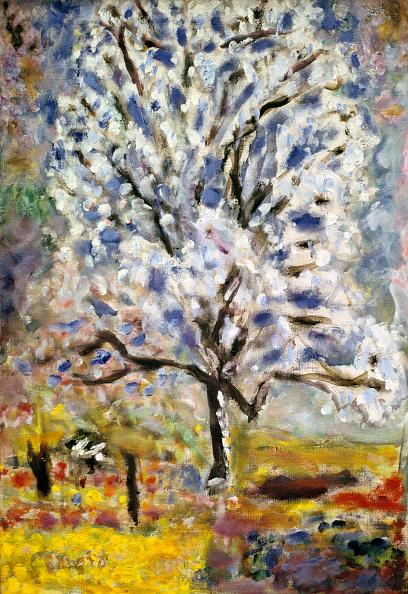春「The Almond Tree In Blossom」:写真・画像(15)[壁紙.com]