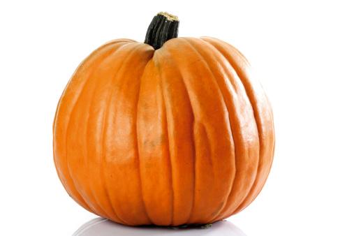 Pumpkin「Kürbis」:スマホ壁紙(16)