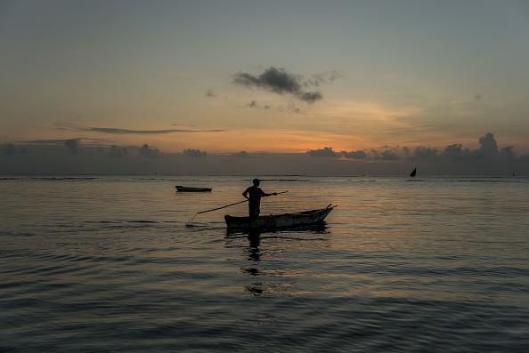 波「Coast At Msambweni」:写真・画像(18)[壁紙.com]