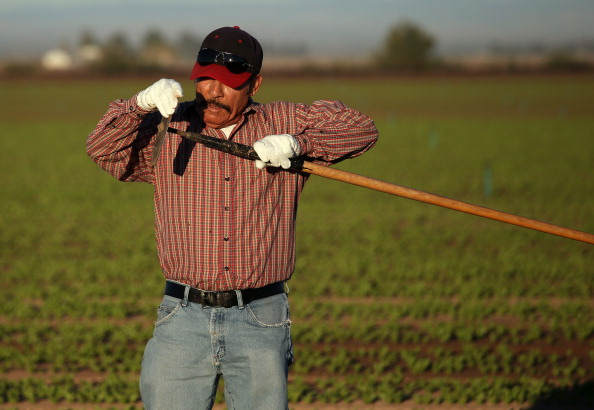 Sharpening「Migrant Workers Farm Crops In Southern CA」:写真・画像(8)[壁紙.com]