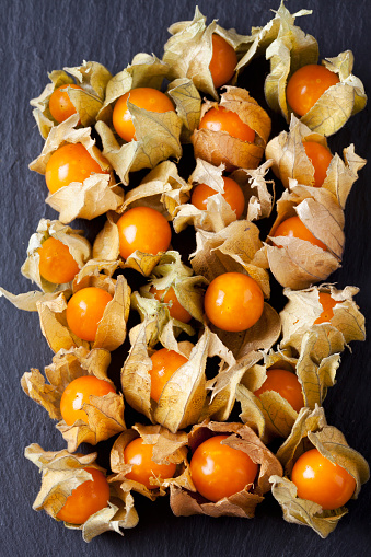 Chinese Lantern「Physalis on slate」:スマホ壁紙(19)