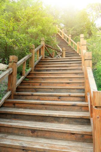 Steep「Wooden steps in Garden」:スマホ壁紙(13)